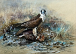 Falconry related paintings